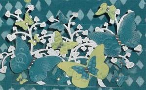 Schmetterlinge 021